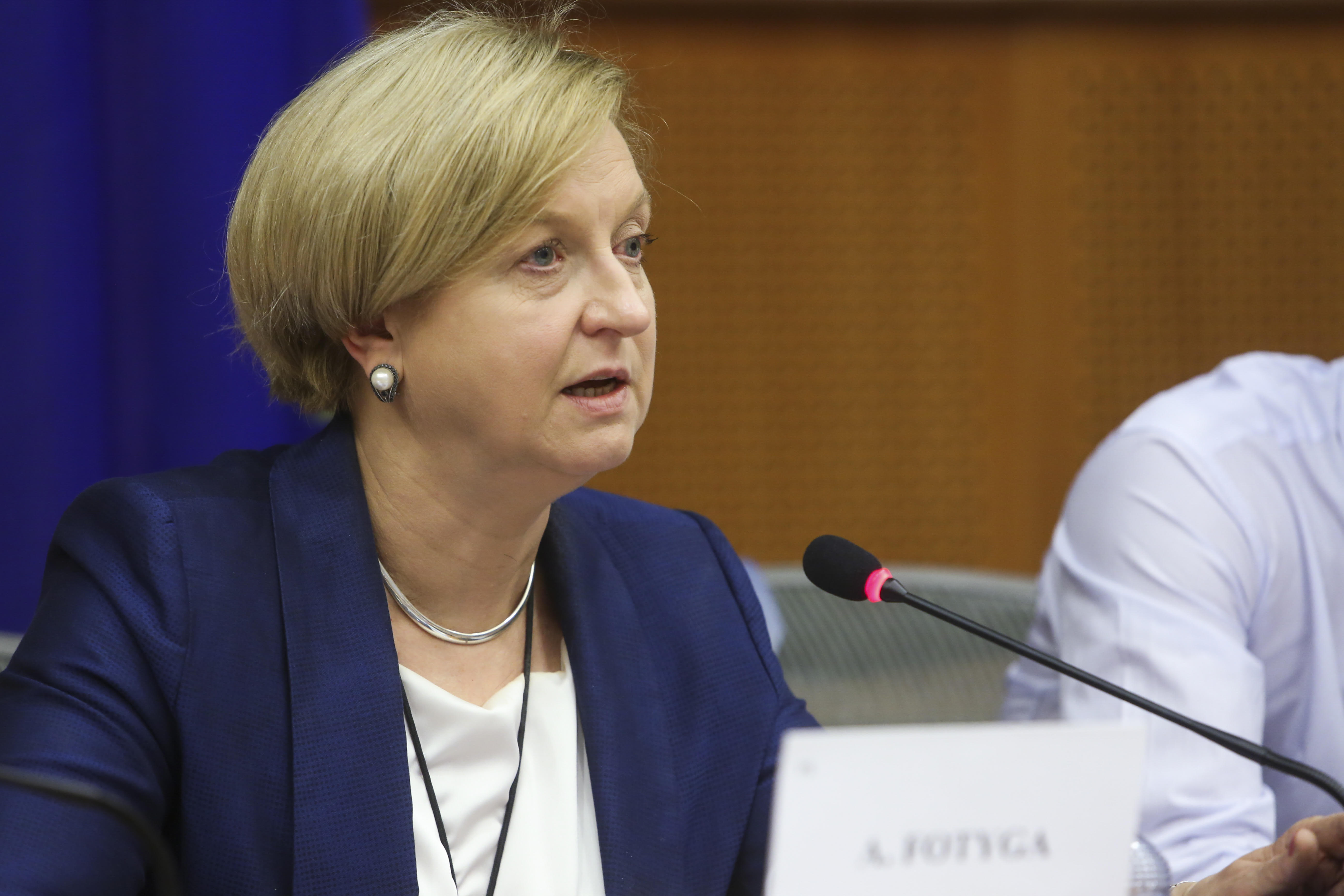 Be aware of Russian and ISIS propaganda, warn foreign affairs MEP's