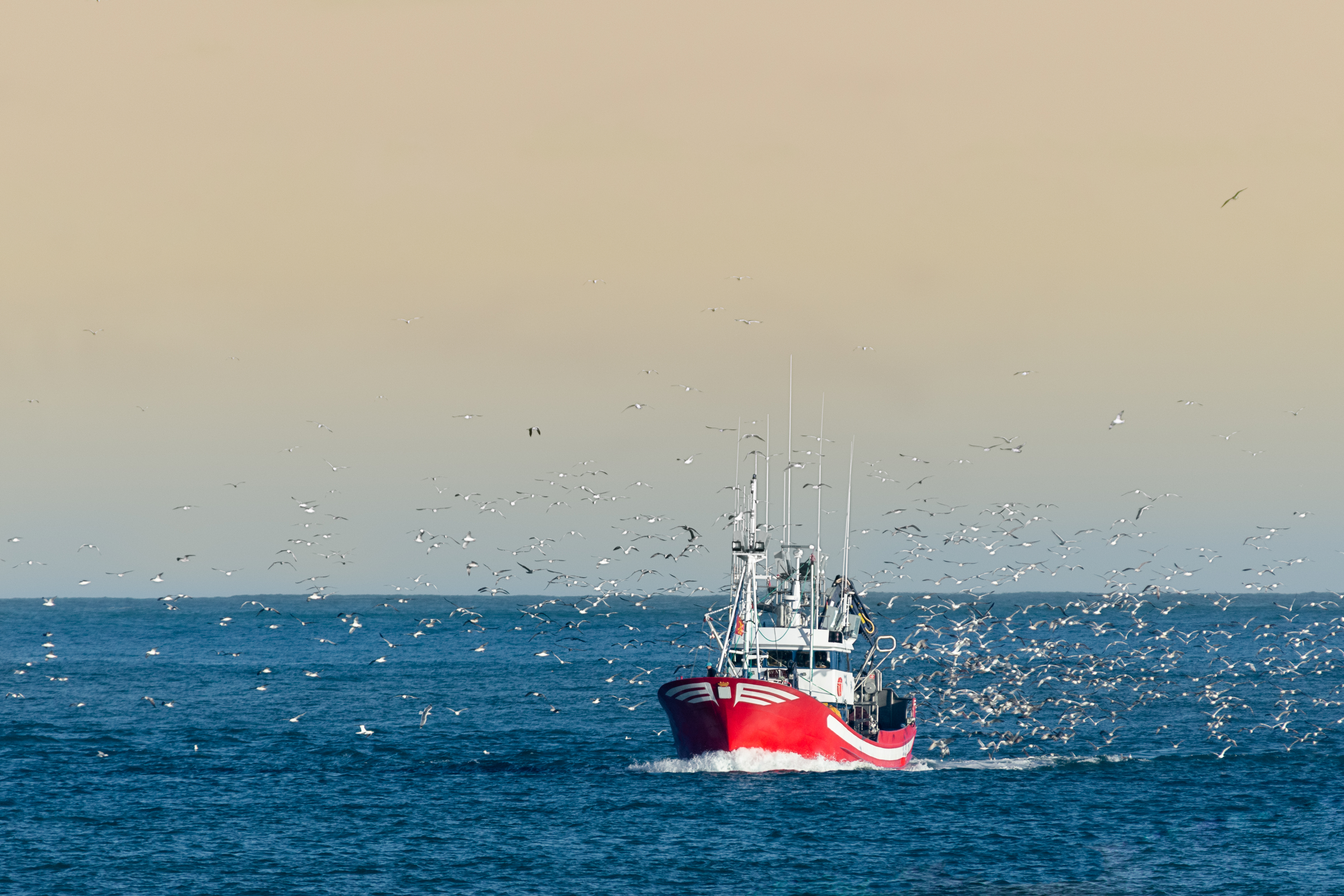 The ECR Group welcomes the new Control Regulation on Fisheries